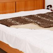 Leopard Luxe Faux Fur 100% Polyester Throw (50x60 in)