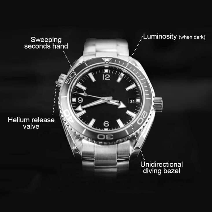 Anatomy Of Watch